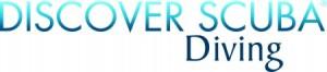 DSD® Logo 4C